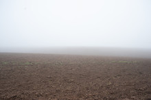 Field On A Foggy Day