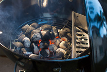 Charcoal Briquettes Teaching O...
