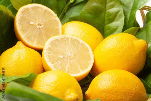 レモン Tableau sur Toile