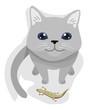 Cat Pet Gift Lizard Illustration