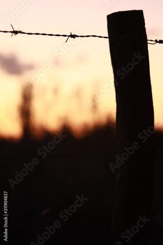 Photo paisaje con alambre de púa y atardecer