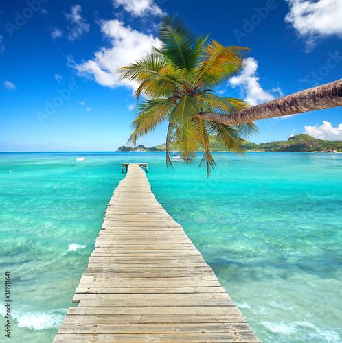 Naklejki na parawan nawannowy   kokospalme-am-meer-am-steg