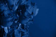 Trendy Classic Blue Color. Bou...