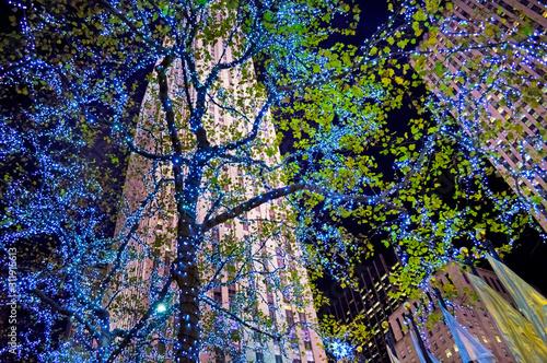 Obraz na plátně Blue Lights Rockefeller Center