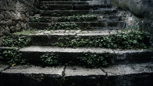 Old Stone Stairs With Moss And...