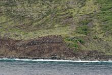 Molokai's Sea Cliffs - Hawaii