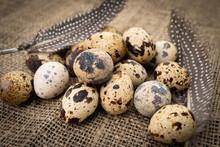 Quail Eggs  On Dark Old  Background