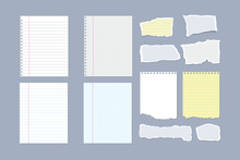 Set Of Notebook Pages And Pieces Of Torn Notebook Paper. Vector Illustration