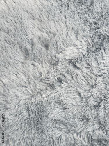 texture of fur Fototapet