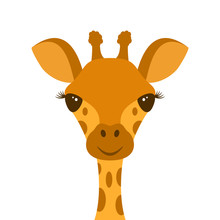 Cute Giraffe Head