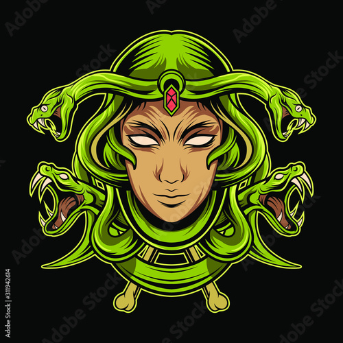 medusa head vector illustration design Canvas Print