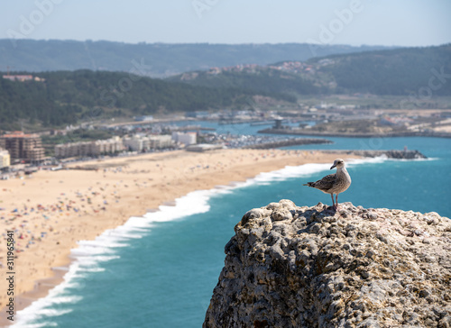 Obraz na plátne  Single seagull on rocky ledge above the crowded beach of Nazare with tourists re