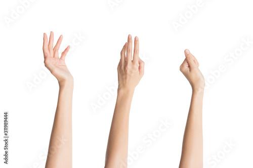 手入れされた3つの指先 Canvas-taulu