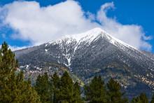 The San Francisco Peaks In Flagstaff, Arizona