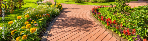 Photo Landscaping in home garden