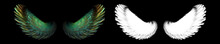 Bird Wings With White Clipping Mask
