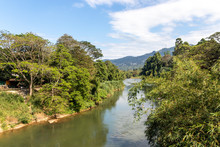 The Mahaweli River Flowing Alo...