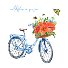 Watercolor Pastel Blue Vintage Bicycle Illustration With Poppy Bouquet In A Basket. Hand Drawn Bike And Bunch Of Wildflowers And Herbs, Isolated On White Background. Summer Bike Ride, Provence Style.
