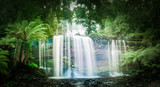 Waterfall in dense rainforest