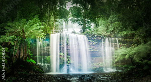 Waterfall in dense rainforest - 312068226