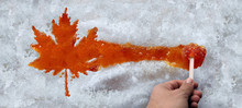 Maple Taffy Leaf
