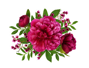 Pink peonies and waxflowers and leaves in a floral arrangement