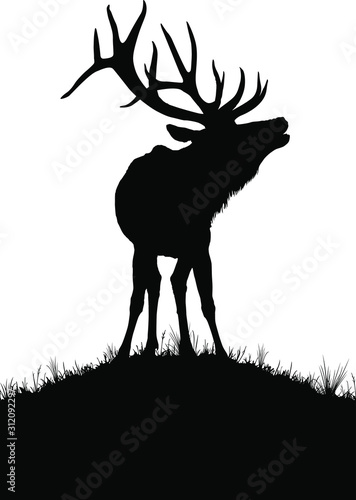 Photo A vector silhouette of a large bull elk bugling.