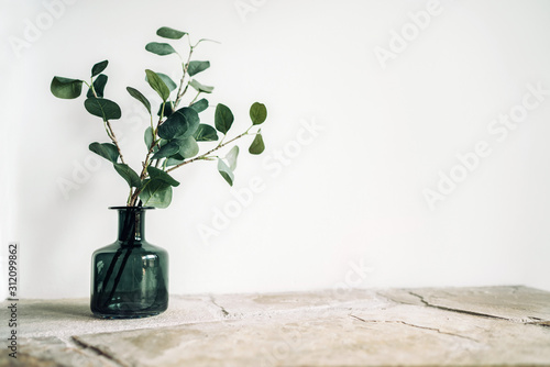 Cuadros en Lienzo Green tree Branch putted into black glass vase on the natural stone mantel shelf on the white color wall background lit with side window light