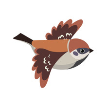 Beautiful Sparrow In Flight On...