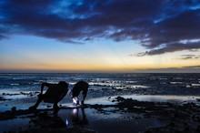 Boys Wearing Headlamps Explore Tide Pools Under A Fiji Sunset