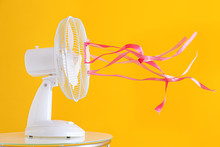Electric Fan With Fluttering R...