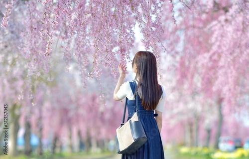 Obraz しだれ桜・ロングヘアーの女性 - fototapety do salonu