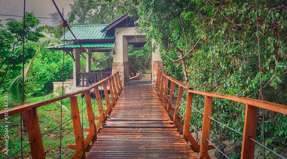 Footbridge at Penang national park, Malaysia. Panorama
