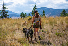 Girl In The Woods On A Dirt Road Walking And Making Jogging With Her Dog On A Leash. On Dirt Road In The British Columbia Mountains