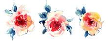 Flowers Watercolor Illustratio...