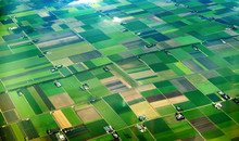 Aerial View Of Cultivated Agricultural Farming Land With Vivid Green Color
