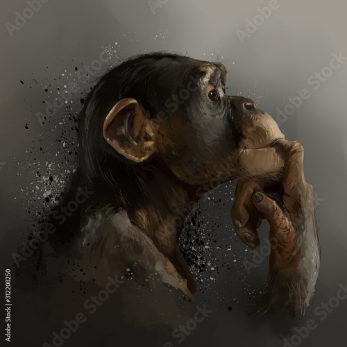 Fotografie, Tablou Chimpanzee head. Watercolor drawing