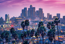 Amazing Sunset View With Palm Tree And Downtown Los Angeles. California, USA