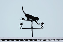 Wind Vane On The Roof In The F...