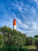 Red And White Lighthouse In The Green