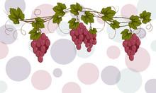 Garland Of Burgundy Vine For Labeling, Menu, Harvest Festival On A Light Background
