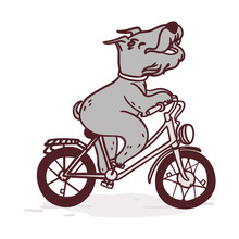Happy Terrier On A Bicycle. Cute Postcard With Dog On A Bike.