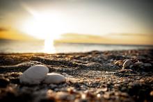 Muschel Am Strand, Sonnenunter...