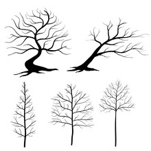 Collection Of Vector Silhouett...