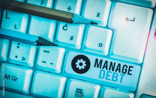 Writing note showing Manage Debt Wallpaper Mural
