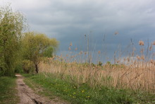 Summer Landscape With Dramatic Threatening Sky, Trees, Reeds And Footpath