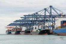 Logistic  Import Export Cargo ...