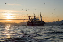 Fishing Boat Norway Sunset Ice