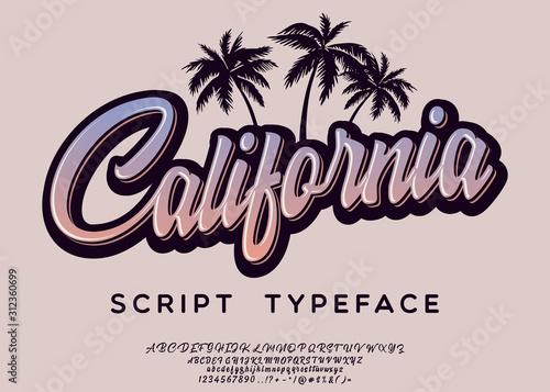 California. Vintage brush script. Handmade font. Retro Typeface. Vector font illustration.