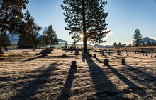 Weed Oregon Cemetary On Cold Morning